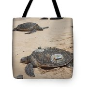 Green Sea Turtles With Gps Tote Bag