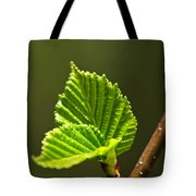 Green Spring Leaves Tote Bag by Elena Elisseeva