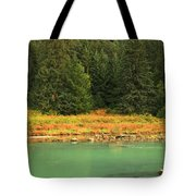 Grizzly Bear Fishing In Chilkoot River Tote Bag