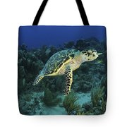 Hawksbill Turtle On Caribbean Reef Tote Bag