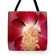 Hibiscus Moscheutos Named Luna Pink Swirl Tote Bag