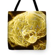 Hiv-1 Infected T4 Lymphocyte Sem Tote Bag