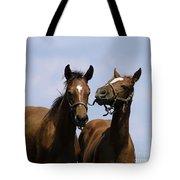 Horse Foul Play Iv Tote Bag
