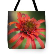 Hot Papaya Coneflower Squared Tote Bag