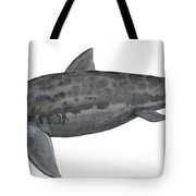 Illustration Of A Prehistoric Tote Bag by Sergey Krasovskiy