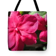 Impatiens Named Dazzler Burgundy Tote Bag