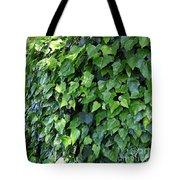 Ivy Wall Tote Bag