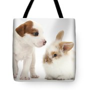 Jack Russell Terrier Puppy And Baby Tote Bag