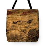 John Day Painted Hills Tote Bag