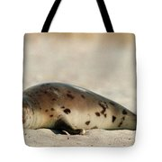 Juvenile Harp Seal Basking In The Sun Tote Bag