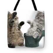 Kittens And Watering Can Tote Bag