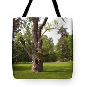 Knurled Tree Tote Bag