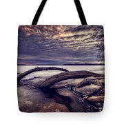 Lake Neatahwanta Tote Bag by Everet Regal