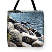 Lake Tahoe Vista Tote Bag