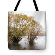 Lake Wanaka Tote Bag