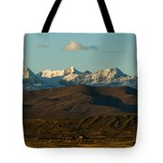 Landscape Of The Highlands And The Cordillera Real. Republic Of Bolivia. Tote Bag