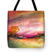 Late Afternoon 23 Tote Bag