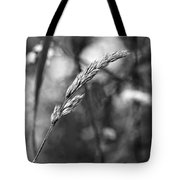 Lazy Afternoon Monochrome Tote Bag