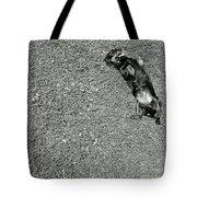Lazy  Daschund Tote Bag