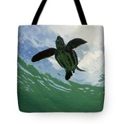 Leatherback Sea Turtle Dermochelys Tote Bag