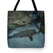 Leopard Shark Courting, Blue Zoo Tote Bag