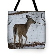 Little White Tail On The Move Tote Bag