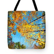 Looking Up At All The Colors Tote Bag