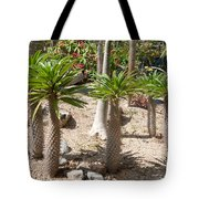 Madagascar Palms Tote Bag