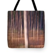 Magical Forest At Sunset Tote Bag