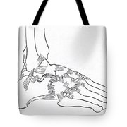 Major Ligaments Of The Foot Tote Bag