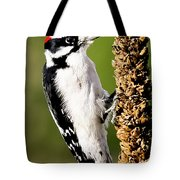 Male Downy Woodpecker  Tote Bag