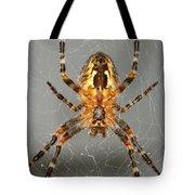 Marbled Orb Weaver Spider Tote Bag