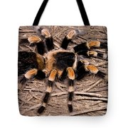 Mexican Red-legged Tarantula Tote Bag