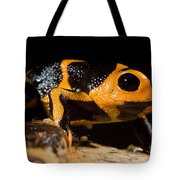 Mimic Poison Frog Tote Bag
