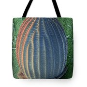 Monarch Butterfly Egg, Sem Tote Bag