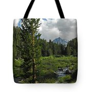 Mosquito Flats Tote Bag