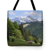 Mountain Landscape In The Alps Tote Bag