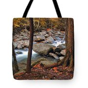 Mountain Stream Tote Bag