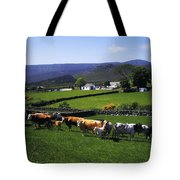 Mourne Mountains, Co Down, Ireland Tote Bag