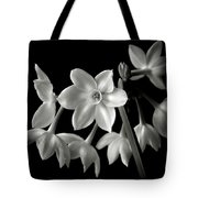 Narcissus In Black And White Tote Bag