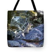 Natural Beauty Tote Bag