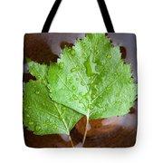 Natural Spa Tote Bag