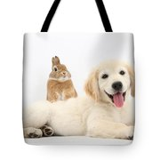Netherland-cross Rabbit And Golden Tote Bag