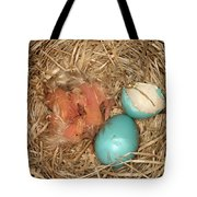 Newborn Robin Nestlings Tote Bag