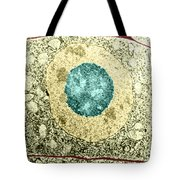 Normal Cell Tote Bag