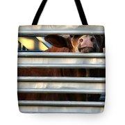 Nosey Tote Bag
