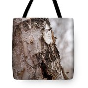 November Birch Tote Bag