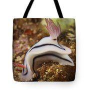 Nudibranch Feeding On The Reef, Fiji Tote Bag
