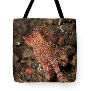 Ocellate Octopus With Two Blue Spots Tote Bag