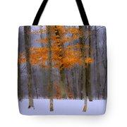 October Flame Tote Bag
